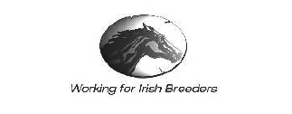 Working for irish breeders