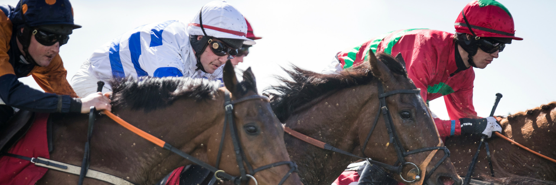 PUNCHESTOWN FESTIVAL 2019